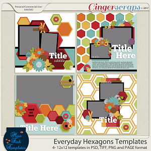 Everyday Hexagons Templates by Miss Fish