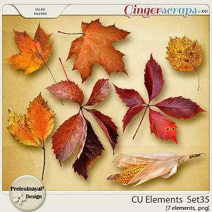 CU Elements Set35 by PrelestnayaP Design