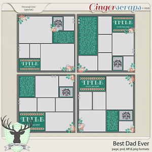 Best Dad Ever by Dear Friends Designs