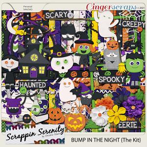 Bump In The Night {The Kit}