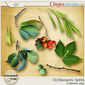 CU Elements Set36 by PrelestnayaP Design