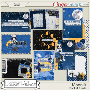 Moonlit - Pocket Cards by Connie Prince