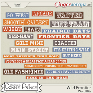 Wild Frontier - Word Bits by Connie Prince