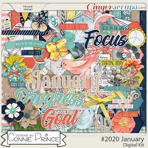 #2020 January - Kit by Connie Prince