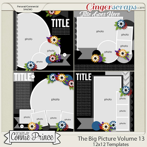 The Big Picture Volume 13 - 12x12 Temps (CU Ok)
