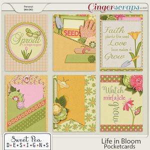 Life in Bloom Pocket Cards