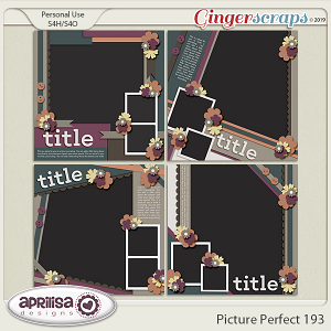 Picture Perfect 193 by Aprilisa Designs