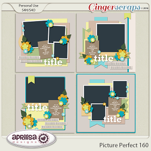 Picture Perfect 160 by Aprilisa Designs