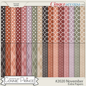 #2020 November - Extra Papers by Connie Prince