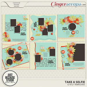 Take A Selfie Templates by JB Studio