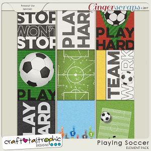 Playing Soccer Journal Cards