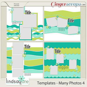 Templates - Many Photos 4 by Lindsay Jane
