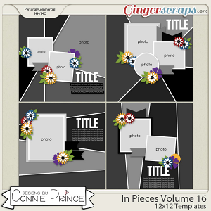 In Pieces Volume 16 - 12x12 Temps (CU Ok) by Connie Prince