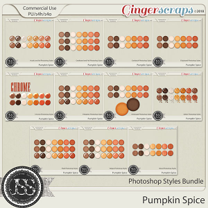 Pumpkin Spice CU Photoshop Styles Bundle
