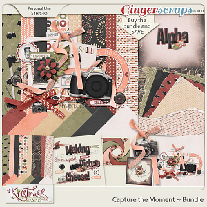 Capture the Moment Bundle