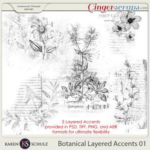 Botanical Layered Accents 01 by Karen Schulz