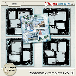 Photomasks templates Vol.30