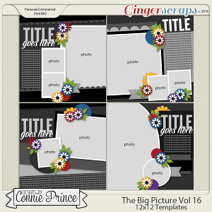 The Big Picture Volume 16 - 12x12 Temps (CU Ok)