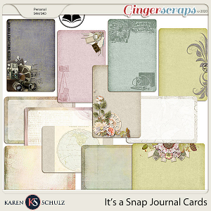 Its a Snap Journal Cards by Karen Schulz and ADB Designs