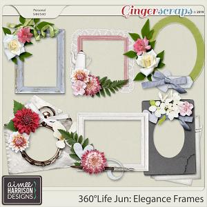 360°Life June: Elegance Frame Clusters by Aimee Harrison