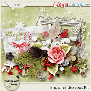 Snow rendezvous Kit