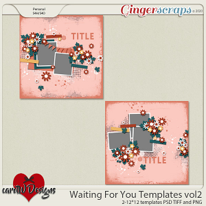 Waiting For You Templates vol2 by CarolW designs