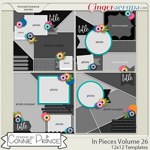 In Pieces Volume 26 - 12x12 Temps (CU Ok) by Connie Prince
