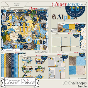 Life Chronicled: Challenges - Bundle by Connie Prince