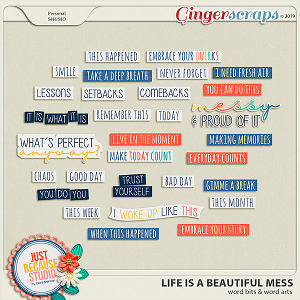 Life Is A Beautiful Mess Wordbits & Wordarts by JB Studio