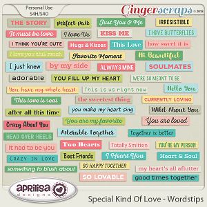 Special Kind Of Love - Wordstrips