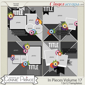 In Pieces Volume 17 - 12x12 Temps (CU Ok) by Connie Prince