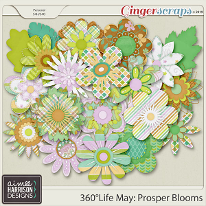 360°Life May: Prosper Blooms by Aimee Harrison