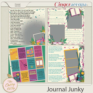 The Cherry On Top:  Journal Junky
