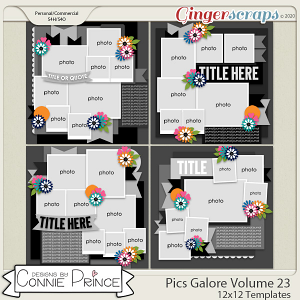 Pics Galore Volume 23 - 12x12 Temps (CU Ok) by Connie Prince