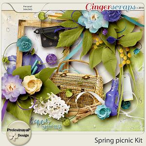 Spring picnic Kit