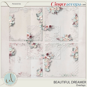 Beautiful Dreamer Overlays by Ilonka's Designs