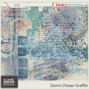 Storm Chaser Graffiti by Aimee Harrison