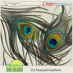 CU Peacock Feathers