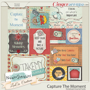 Capture The Moment Journal Cards