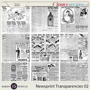 Newsprint Transparencies 02 by Karen Schulz