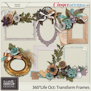 360°Life Oct: Transform Frame Clusters by Aimee Harrison