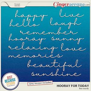 Hooray For Today Fine Words by JB Studio