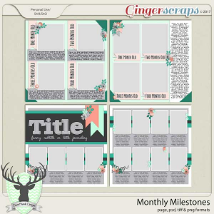 Monthly Milestones by Dear Friends Designs