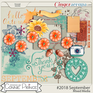 #2018 September - Mixed Media by Connie Prince