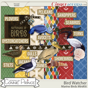 Bird Watcher - Marine Birds MiniKit by Connie Prince