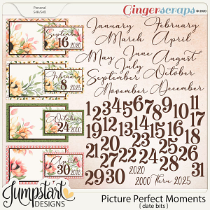 Picture Perfect Moments {Date Bits}