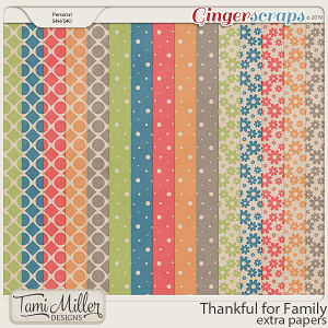 Thankful for Family Extra Papers by Tami Miller Designs