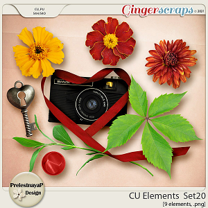 CU Elements Set20 by PrelestnayaP Design