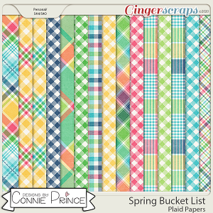 Spring Bucket List - Plaid Papers by Connie Prince
