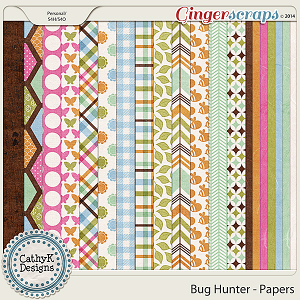 Bug Hunter - Papers